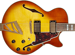 D'Angelico SS Guitars