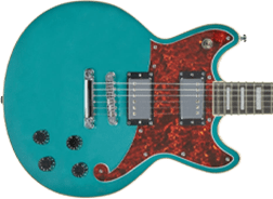D'Angelico Brighton Guitars