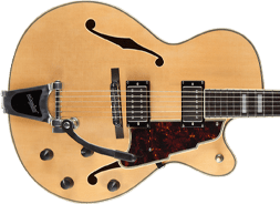 D'Angelico 175 Guitars