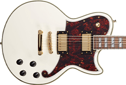 D'Angelico Atlantic Guitars