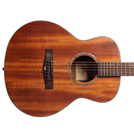 EastCoast Acoustic Guitars