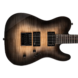 ESP TE Series Guitars