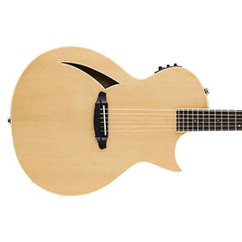 ESP TL Series Acoustic Guitars