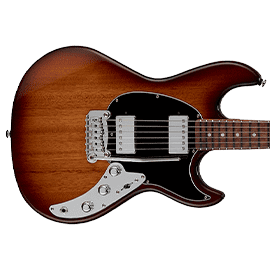 G&L Skyhawk Guitars