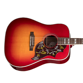 Gibson Montana Acoustic Guitars