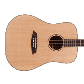 Sire R3 Acoustic Guitars