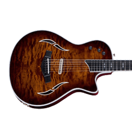 Taylor T5 Series Guitars