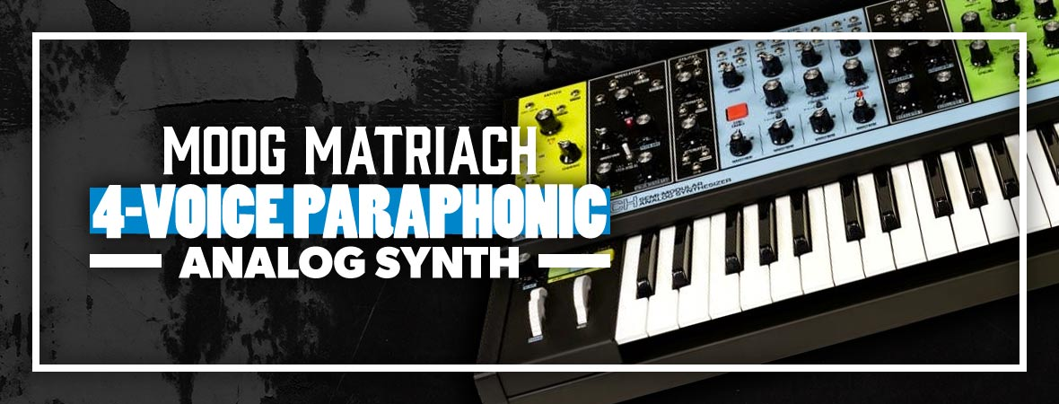 Moog Matriarch Synth at Andertons Music Co.